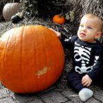 Little boy dressed as skeleton holds halloween pumpkin