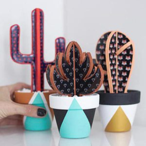Decorative eternal cactus plant