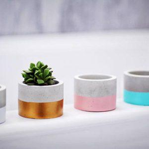Modern concrete cylinder planter for air plants