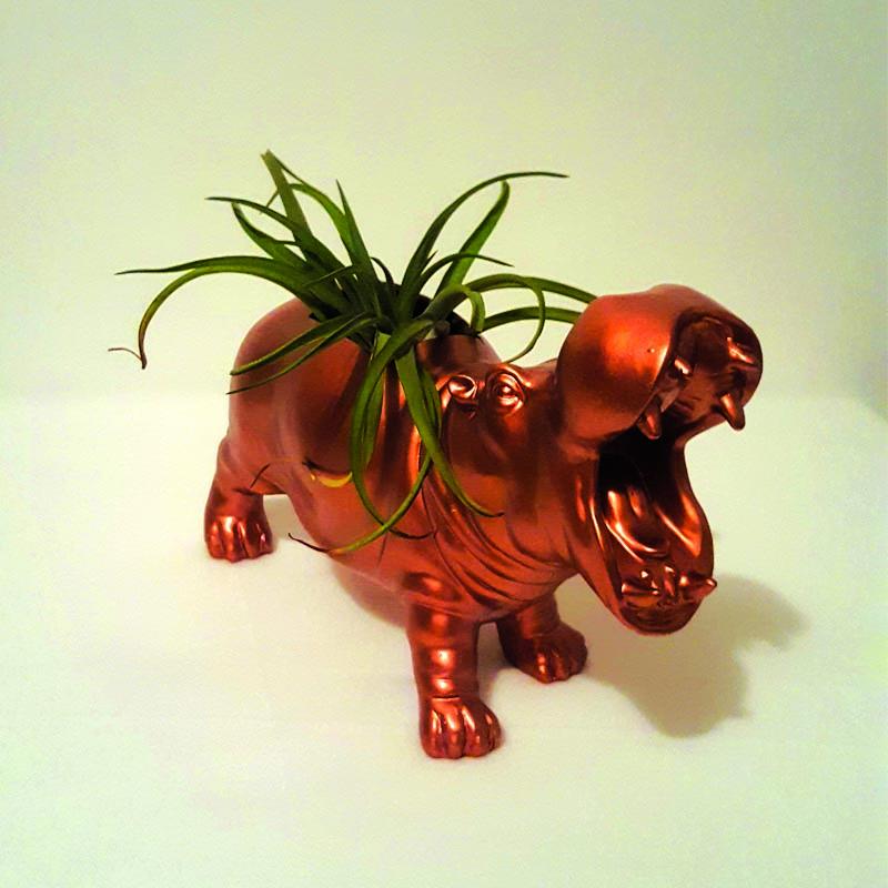 Copper hippo air plant(er) mount open